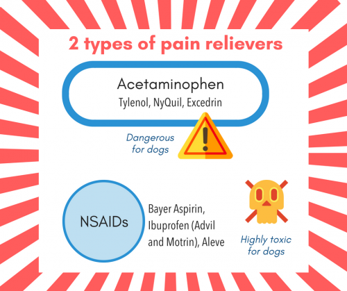 2 types of pain relievers