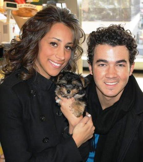 Kevin and Danielle Jonas with Morkie
