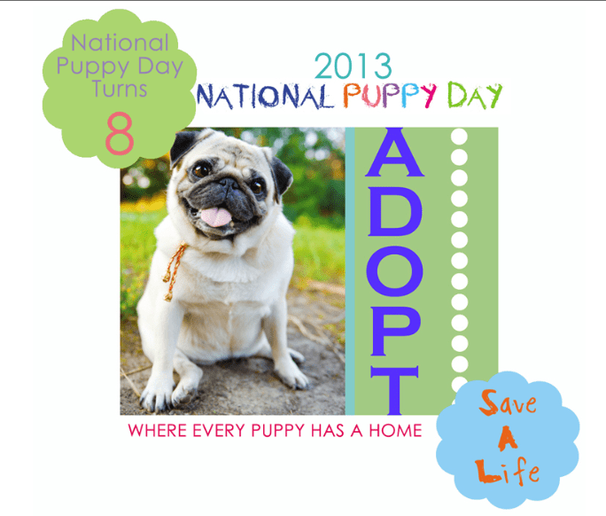 Celebrate National Puppy Day 2013