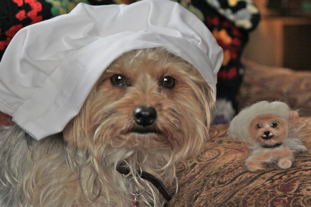 3 Thanksgiving treats that could kill your Morkie!