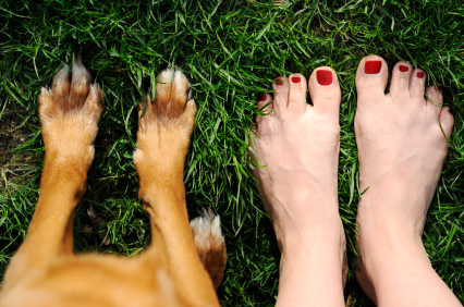 mani pedi for people and for dogs