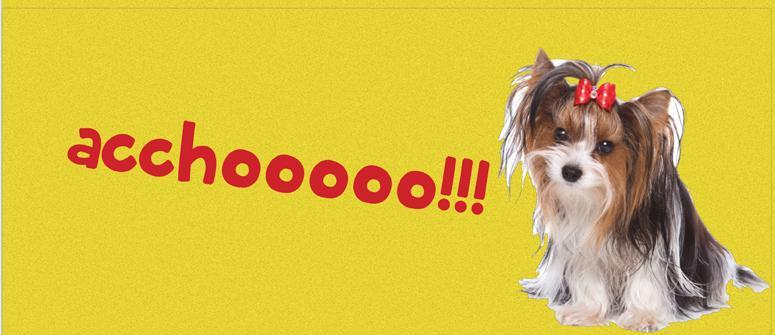 Reverse sneezing!