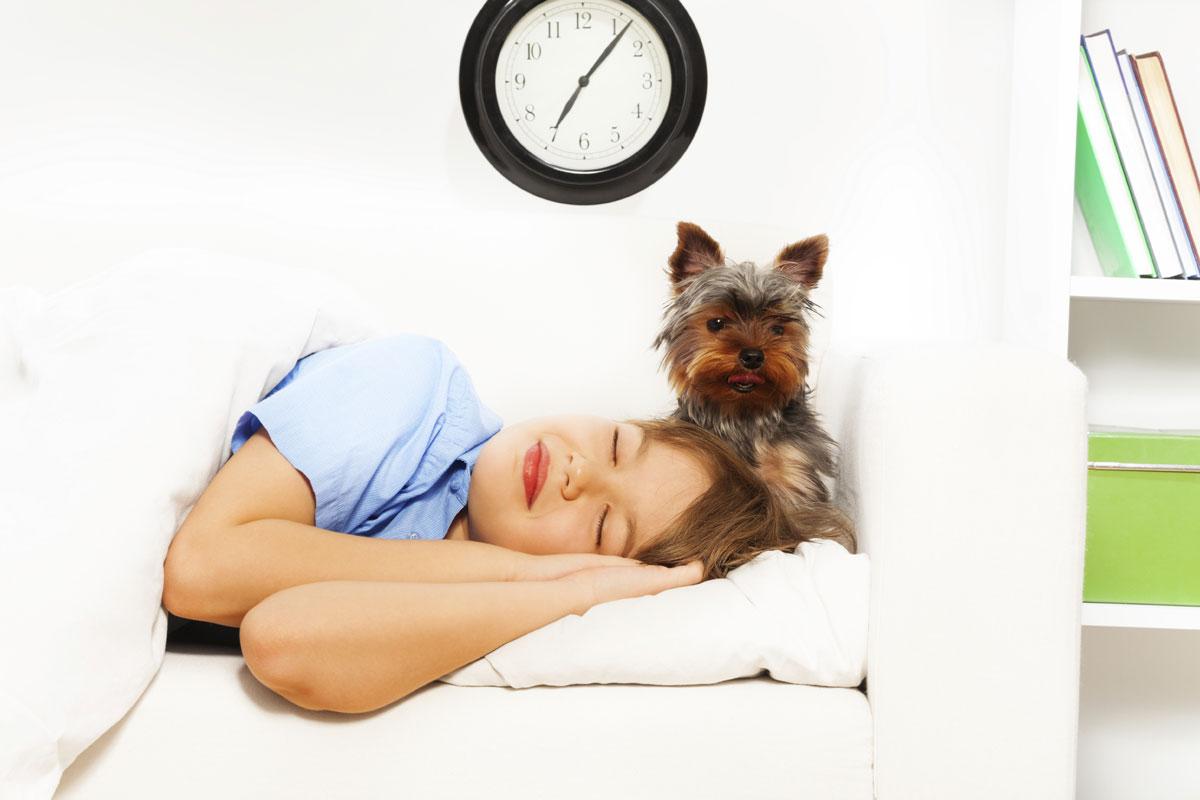 woman with yorkie sleeping