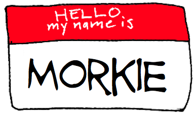hello my name is morkie