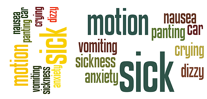 motion sickness feature graphic