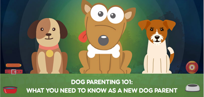 What you need to know as a new dog parent