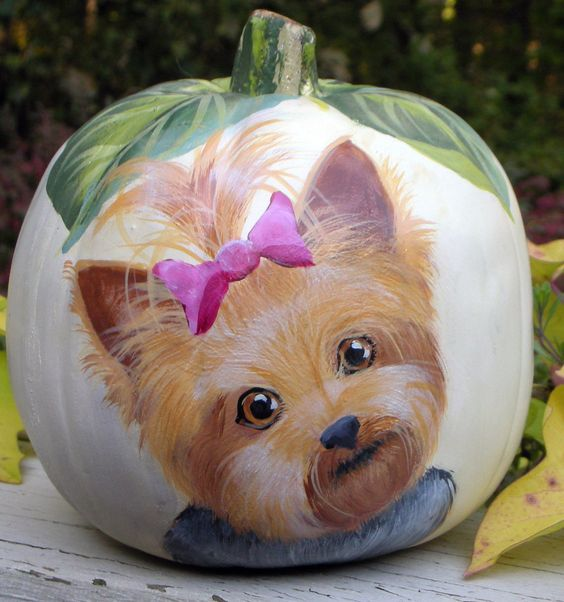 AMAZING pumpkin painted with yorkie picture
