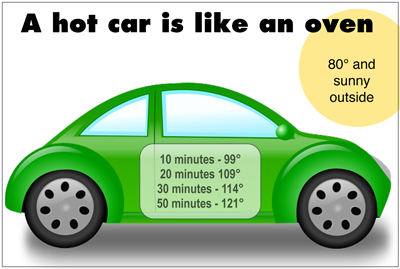 A car is live an oven