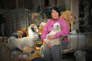 woman with maltese dog for yulin festival