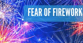 fear of fireworks