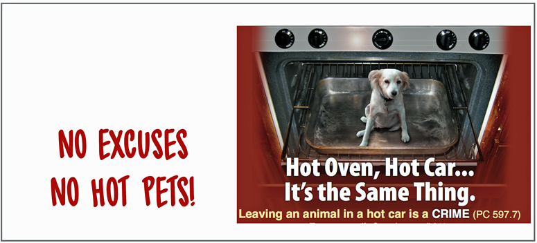 no hot pets