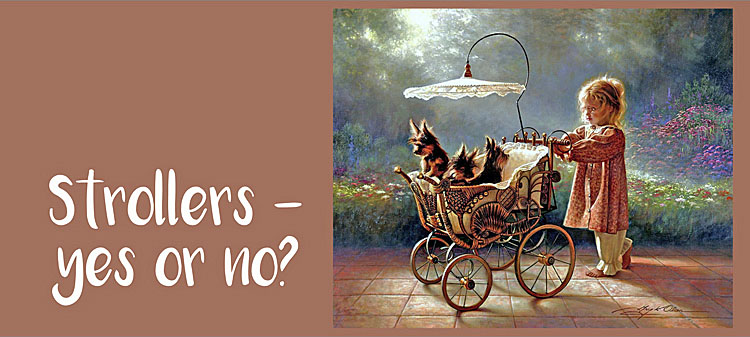 Dogs in Stroller in an old fashioned painting
