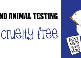end animal testing go cruelty free