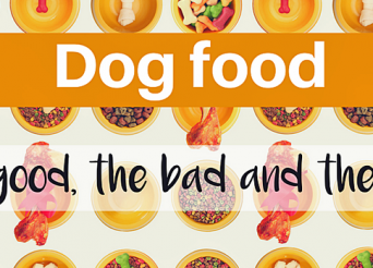 dog food - the good, the bad and the ugly