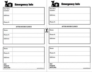emergency vet print out info