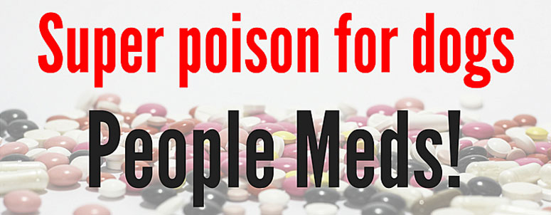 super poison for dogs: people meds