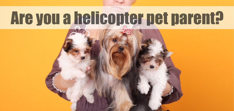 are you a helicopter pet parent?