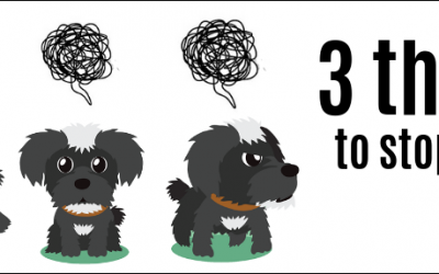 Don't make these 3 dog owner mistakes