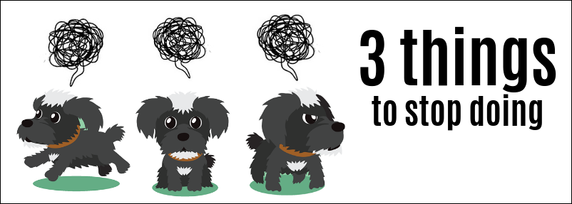 things to stop doing for your dog