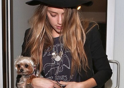 Amber Heard and her yorkie