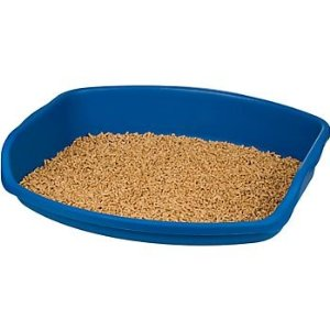 kitty litter tray