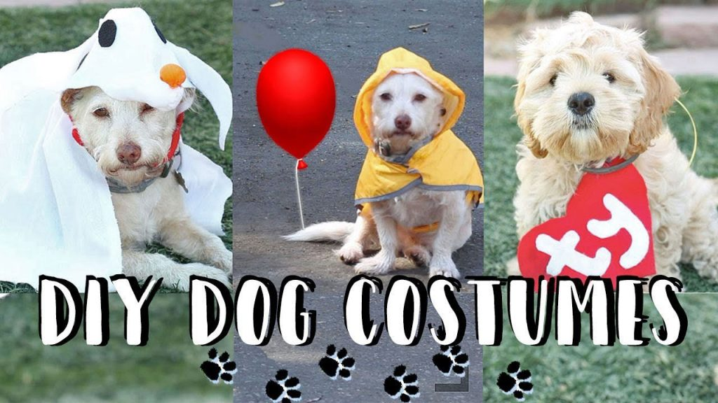 Simple Halloween costumes for dog