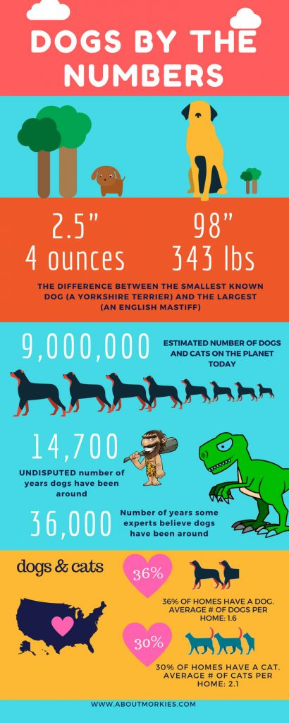 dogs by the numbers