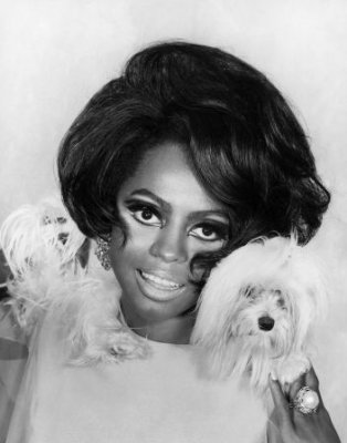 Diana Ross with a maltese dog