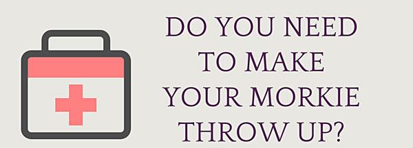 do you need to make your dog throw up