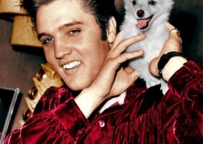 Elvis and a maltese puppy