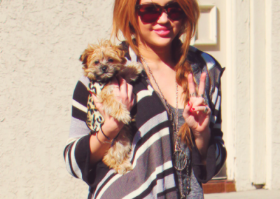 Miley Cyrus and her morkie
