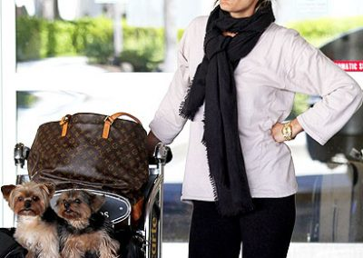Molly Sims and her two morkies