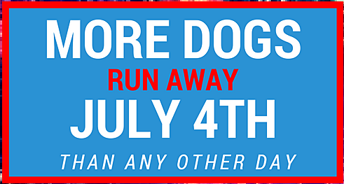 more dogs run away july 4th than any other day
