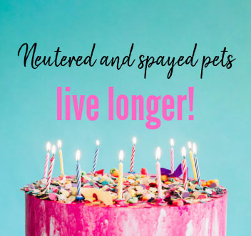 neutered and spayed pets live longer