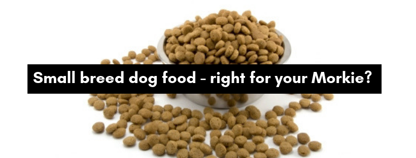 Small breed dog food - right for your Morkie_