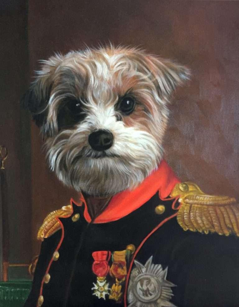 dog dressed as napoleon