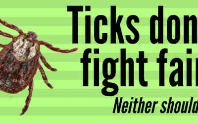 Natural Tick Fighting Solutions