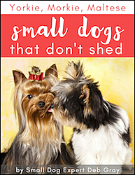 small dogs that don't shed book