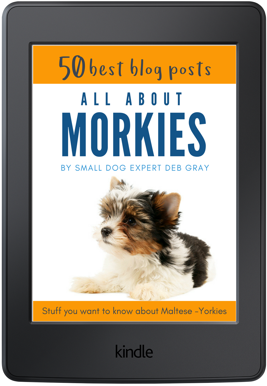 Dog care about morkies