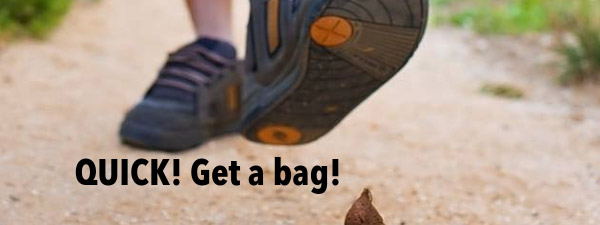 Quick get a bag, as man is about to step in dog poop