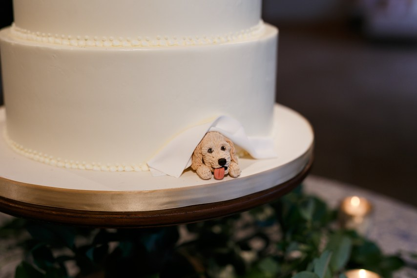 Dog on wedding cake