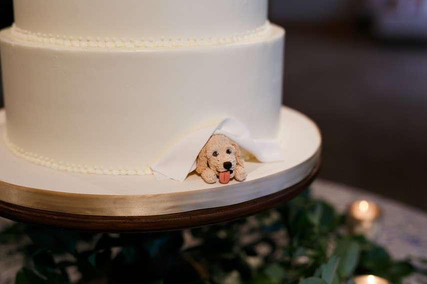 Dog on wedding cake