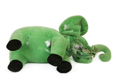 avoid dog toys where parts like eyes can be chewed off