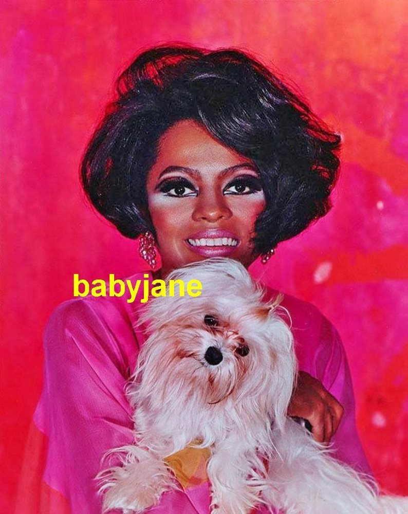 Diana Ross and Maltese called Baby Jane