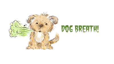 Dog bad breath: curse of small dogs?
