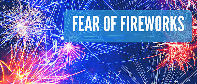 dogs and fear of fireworks