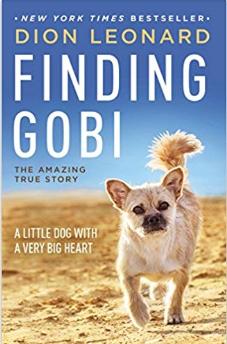Finding Gobi, by Dion Leonard