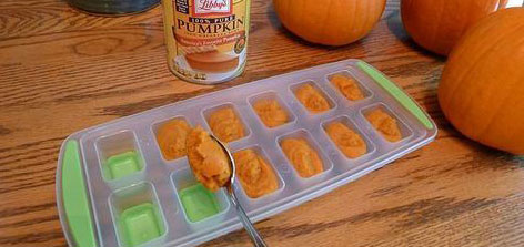 freeze  leftover pumpkin to use later