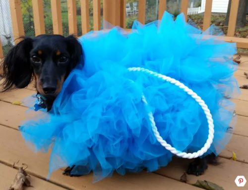 giant loofah costume