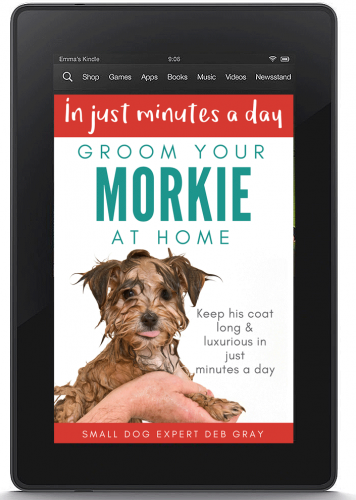ebook about grooming your Morkie at home yourself